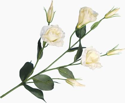 """Floralsilk Искусственные цветы """"Лизиантус белый"""", длина 76см, артикул BB21305CR"""
