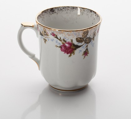 Кружка Шиповник 300мл Porcelaine Czech Gold Hands IWB013Mug0.3