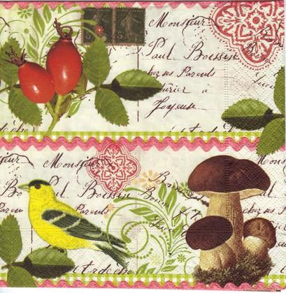 Салфетки для декупажа Ботаническая открытка, 33x33см, 3 слоя, 20шт Paper+Design 21754