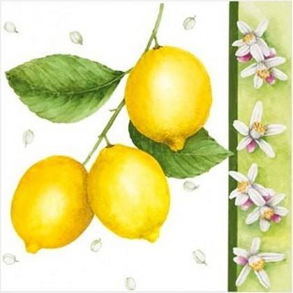 "Paw CITRUS LIMON Салфетка ""Лимон"", 33х33см, 3 слоя, 20шт., артикул SDL080000"