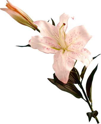 """Floralsilk Искусственные цветы """"Лилия Касабланка розовая"""", длина 87см, артикул BB21333C"""