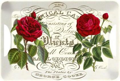 Поднос 47x33см Ботаническая роза Creative Tops TRLH3603