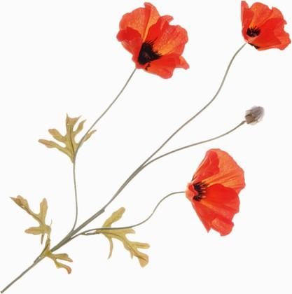 """Floralsilk Искусственные цветы """"Мак полевой"""", тон оранжевый, 3 цветка и коробочка, длина 63см , артикул 11480D-OR"""