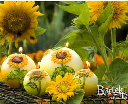 "Bartek Candles SUNFLOWER Свеча ""Подсолнечник"" - образ коллекции A, шар, диаметр 60мм, артикул 5907602648157"