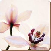 Подставки на пробке Орхидея Элегант 29х29см, 4шт Creative Tops 5176468
