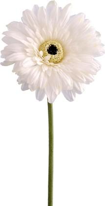 """Цветок искусственный """"Гербера белая"""" 64см Floralsilk BB21184WH"""