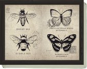 Поднос с подушкой Бабочки и пчелы 44x34см Creative Tops 5138293