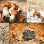 Салфетки для декупажа Лесной урожай, 33x33см, 3 слоя, 20шт Paper+Design 22005