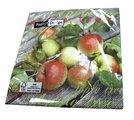 Салфетки коктейль Яблоки, 25x25см, 3 слоя, 20шт Paper+Design CN0875