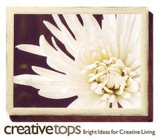 Красивые и удобные подносы с подушкой от Creative Tops