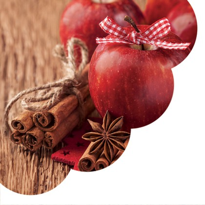 Салфетки круглые Корица и яблоко 32см, 3 слоя, 12шт Paw SDR073200