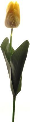 Цветок искусственный Тюльпан Ду Апстар желтый Top Art Studio WAF0929-TA