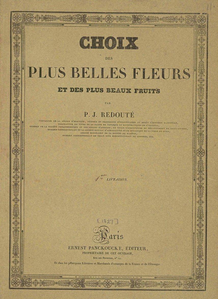 Обложка книги: Избранное из прекрасных цветов и веток с лучшими фруктами