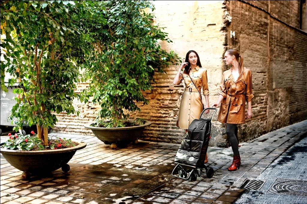 Пользователи сумки-тележки Rolser в городских условиях