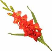 """Цветок искусственный """"Гладиолус красный"""", 101см Floralsilk 11193RED"""