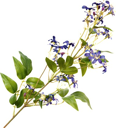 """Floralsilk Искусственные цветы """"Клематис дикий голубой"""", длина 68см, артикул 11080BL"""