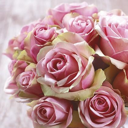 Салфетки для декупажа Элегантные розы 33x33, 3-сл, 20шт Paw TL329000