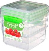 Набор контейнеров Sistema Fresh, 1.2л, 3шт, салатовый 951630