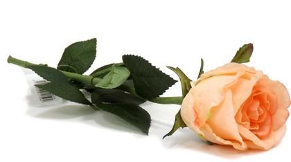 Цветок искусственный Atelier de Fleur Роза Богема розовая 65см WAF1159-TA