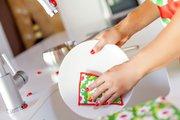 Губка для посуды 2шт. Vigar Ladybug 3950