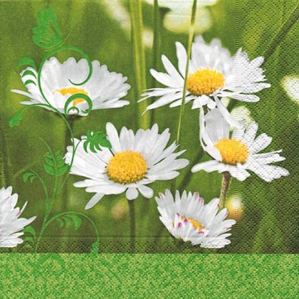 Салфетки коктейль Ромашки на поляне, 25x25см, 3 слоя, 20шт Paper+Design 11477