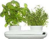 Горшок для растений SagaForm Kitchen Дуэт 5015859