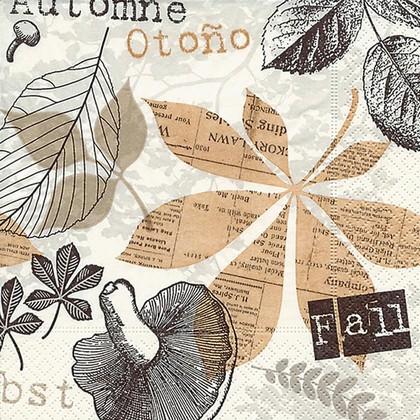 Салфетки для декупажа Коллаж, 33x33см, 3 слоя, 20шт Paper+Design 22009
