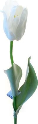 Цветок искусственный Тюльпан Эн Росарио белый, 65см Top Art Studio WAF0061-TA