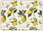 Подставки под тарелки на стол Top Art Studio Лимонный фестиваль 40х29см, 4шт, пробка GD2530-TA