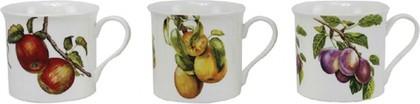Кружка Палас Осенние фрукты 250мл, (3 вида) Leonardo Collection LP91703