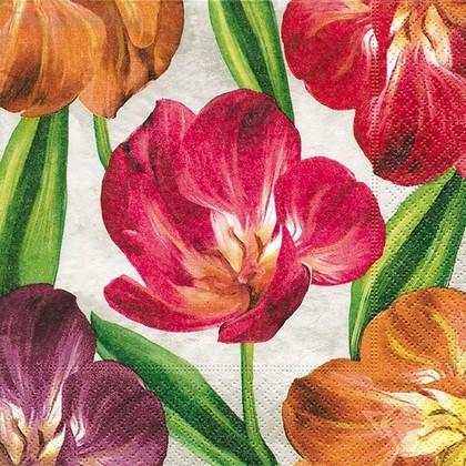 Салфетки коктейль Тюльпаны, 25x25см, 3 слоя, 20шт Paper+Design 11908
