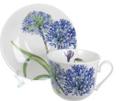 Чашка чайная с блюдцем Roy Kirkham Агапантус, 450мл XNEWAGA1100