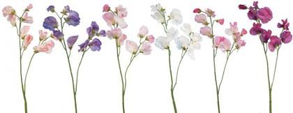 Цветок искусственный Душистый горошек микс, 35см Floralsilk 11692ASS