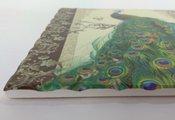 Подставки под горячее Art Atelier Павлин, 20x20см, керамика ART1112-TA