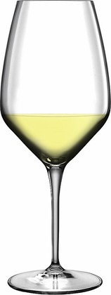 Бокалы для вина Luigi Bormioli Sauvignon Atelier, 6шт., 350мл 10648/07