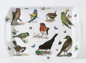 Поднос Roy Kirkham Садовые птицы, 34x23см XGARDB1710