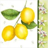 Салфетки Лимон, 33x33см, 3 слоя, 20шт Paw SDL080000