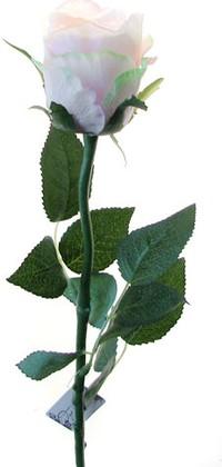 Роза Богема бело-розовая 65см, живое прикосновение Atelier de Fleur WAF0339-TA