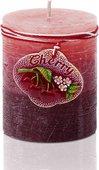 Свеча декоративная Bartek Candles Вишня, колонна 7x9см 5907602691702