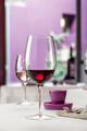 Бокалы для вина Luigi Bormioli Palace, 6шт., 480мл 09461/06