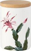 Ёмкость с крышкой для хранения продуктов Nuova Cer Cactus 5010-CAT