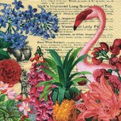 Салфетки для декупажа Paper+Design Тропический сад, 33x33см, 20шт 200253