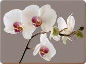 Подставки на пробке Гармония орхидей 30х23см, 6шт Creative Tops 5176457