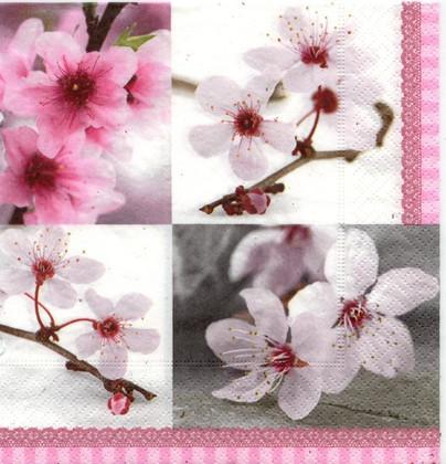 Салфетки для декупажа Время цветения, 33x33см, 3 слоя, 20шт Paper+Design 21658