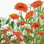 Салфетки Красная поляна, 33x33см, 20шт Paper+Design 200032