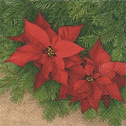 Салфетки для декупажа Рождественский цветок, 33x33см, 3 слоя, 20шт Paper+Design LC0333