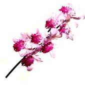 Цветок искусственный Орхидея Каттлея, фиолетовая, 73см Top Art Studio HSD0311-TA