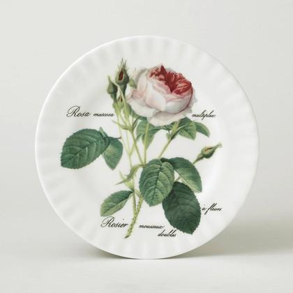 Тарелка Roy Kirkham Роза Редаут, 21см XROSA1270