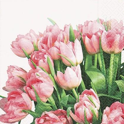 Салфетки коктейль Время тюльпанов, 25x25см, 3 слоя, 20шт Paper+Design CN0455