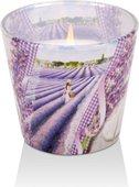 Свеча декоративная Bartek Candles Поцелуй лаванды, стакан 5901685046022